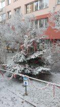 Zdobení vánočního stromku 2016